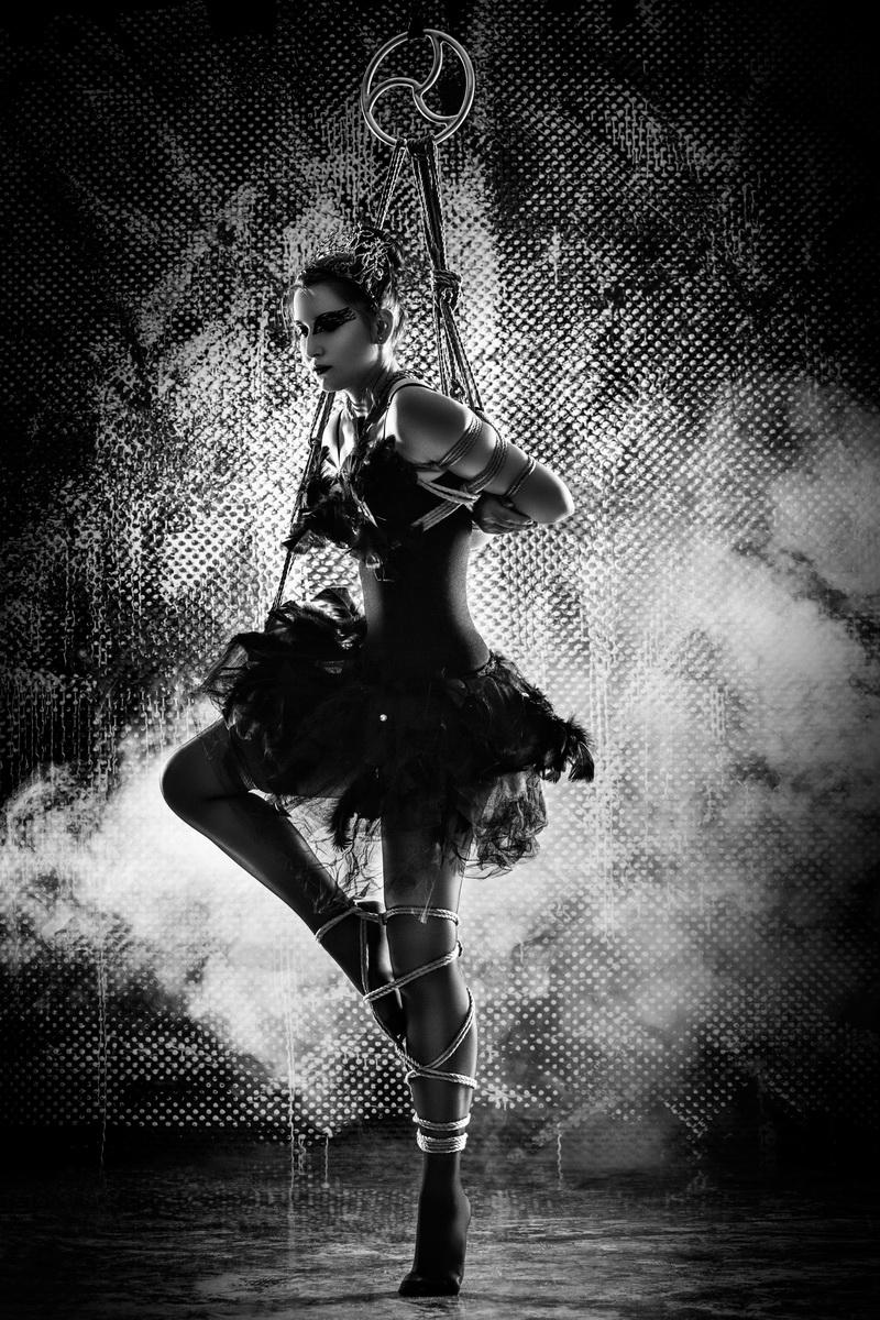 The Life Dancer